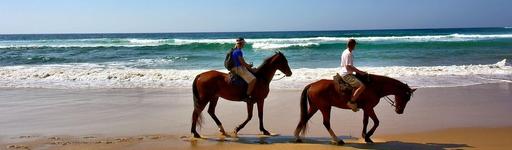 equitation punta cana